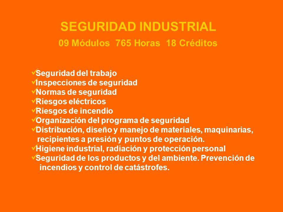SEGURIDAD INDUSTRIAL 09 Módulos 765 Horas 18 Créditos