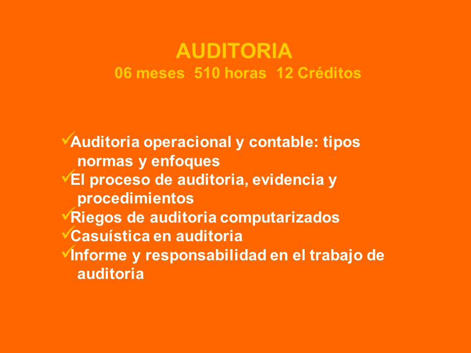 AUDITORIA 06 meses 510 horas 12 Créditos