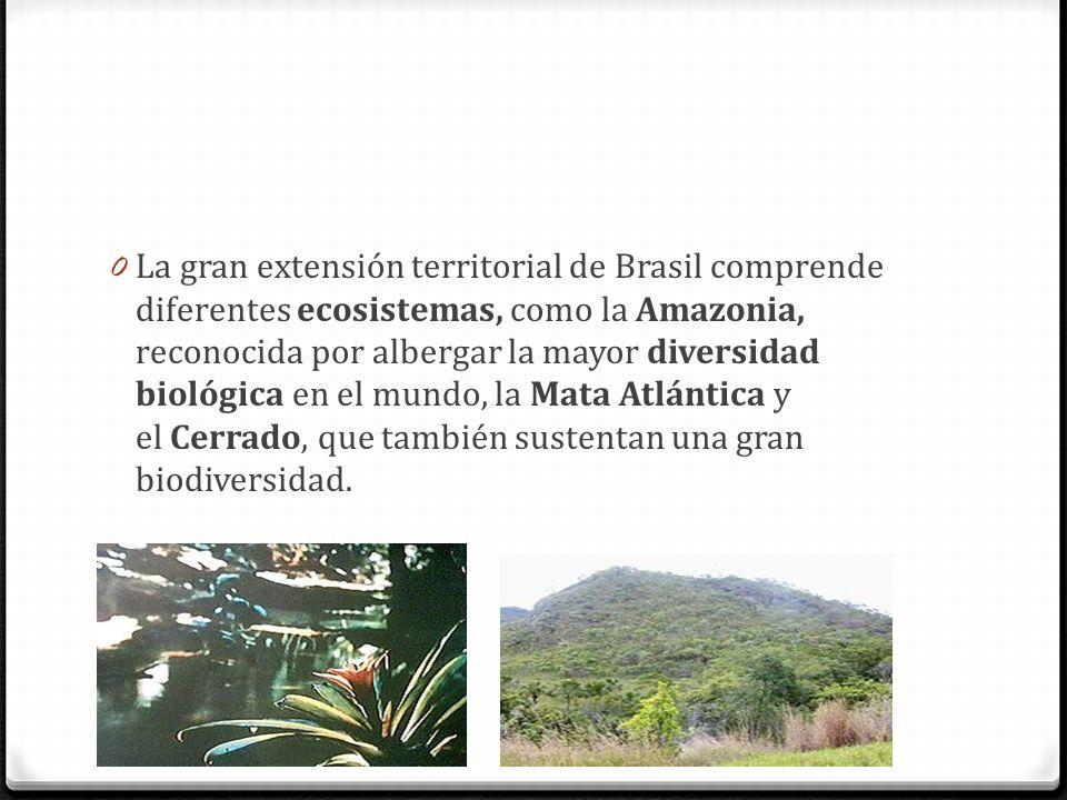 La gran extensión territorial de Brasil comprende diferentes ecosistemas, como la Amazonia, reconocida por albergar la mayor diversidad biológica en el mundo, la Mata Atlántica y el Cerrado, que también sustentan una gran biodiversidad.