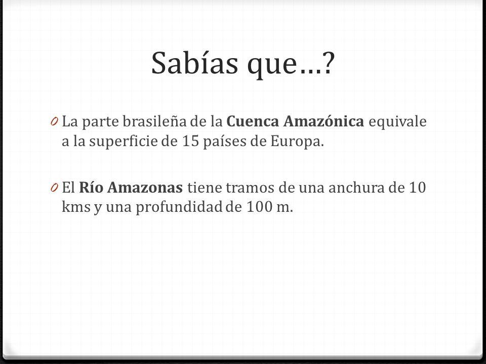 Sabías que… La parte brasileña de la Cuenca Amazónica equivale a la superficie de 15 países de Europa.