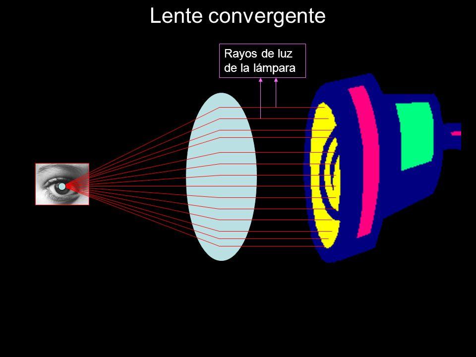 Lente convergente Rayos de luz de la lámpara