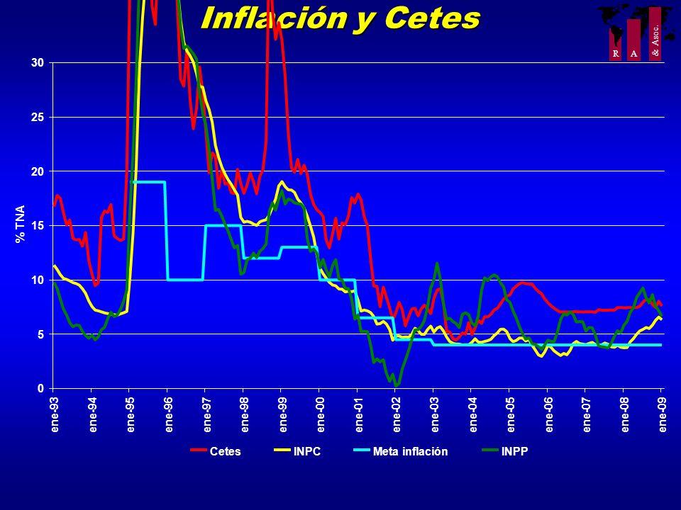Inflación y Cetes 30 25 20 % TNA 15 10 5 ene-93 ene-94 ene-95 ene-96