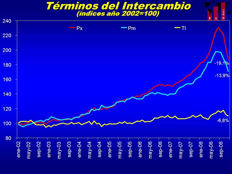 Términos del Intercambio (índices año 2002=100)