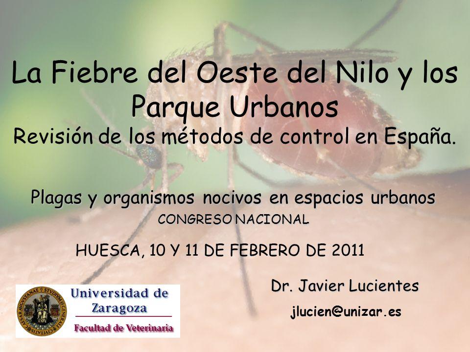 Plagas y organismos nocivos en espacios urbanos CONGRESO NACIONAL