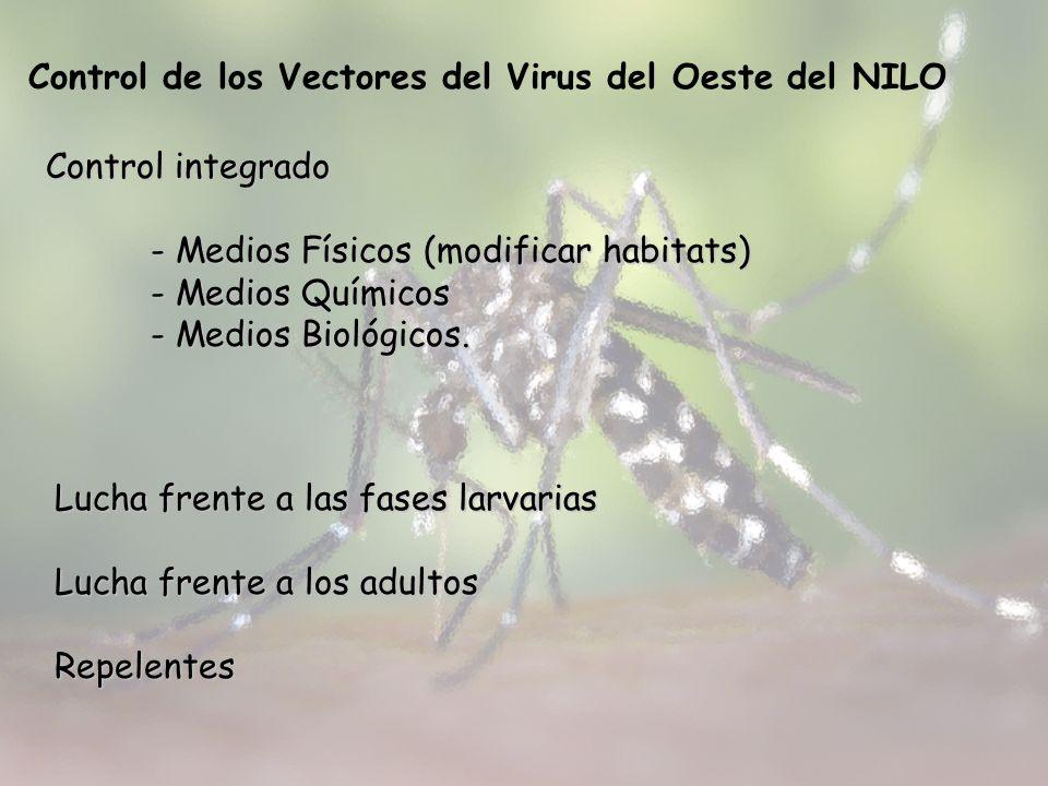 Control de los Vectores del Virus del Oeste del NILO