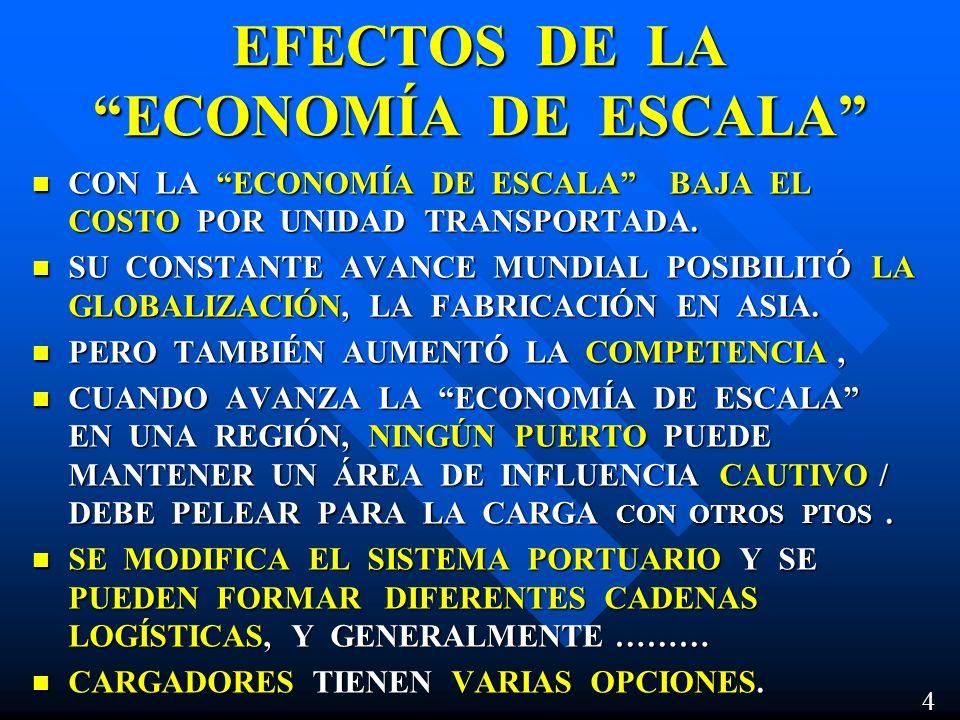 EFECTOS DE LA ECONOMÍA DE ESCALA