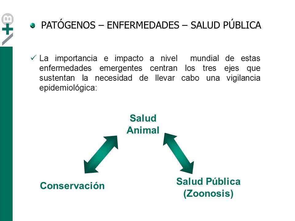 Salud Animal Salud Pública (Zoonosis)