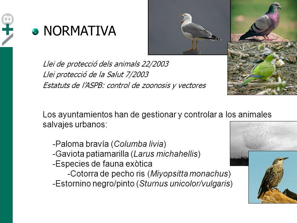 NORMATIVA Llei de protecció dels animals 22/2003. Llei protecció de la Salut 7/2003. Estatuts de l'ASPB: control de zoonosis y vectores.