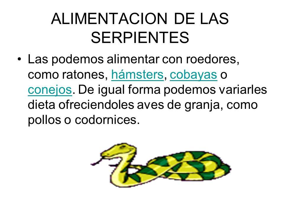 ALIMENTACION DE LAS SERPIENTES