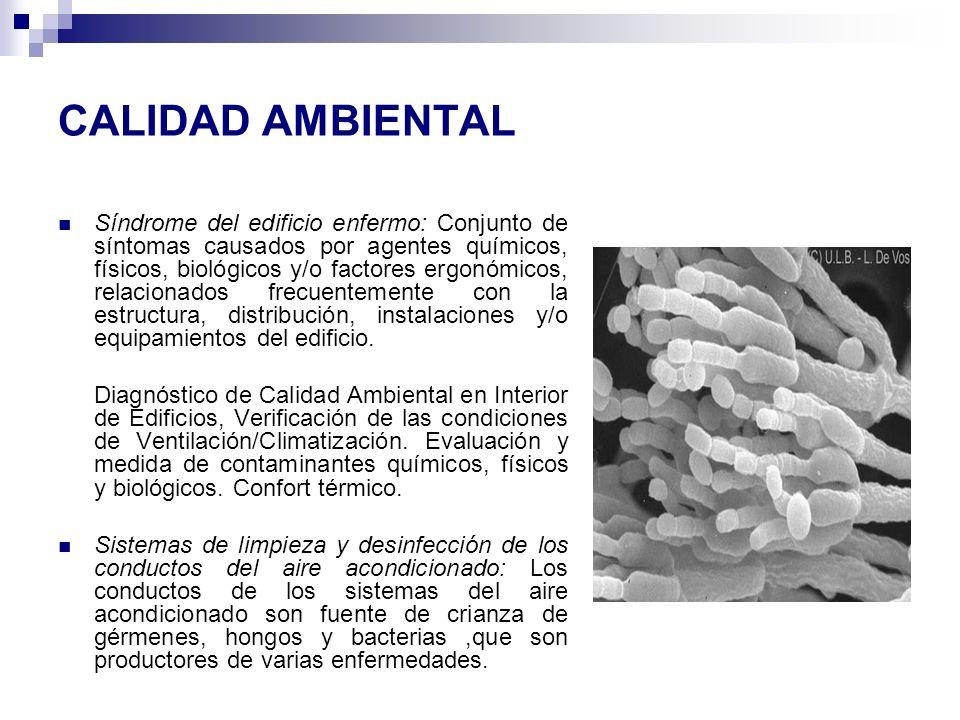 CALIDAD AMBIENTAL