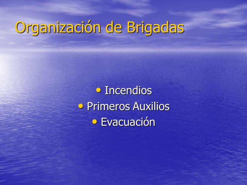 Organización de Brigadas