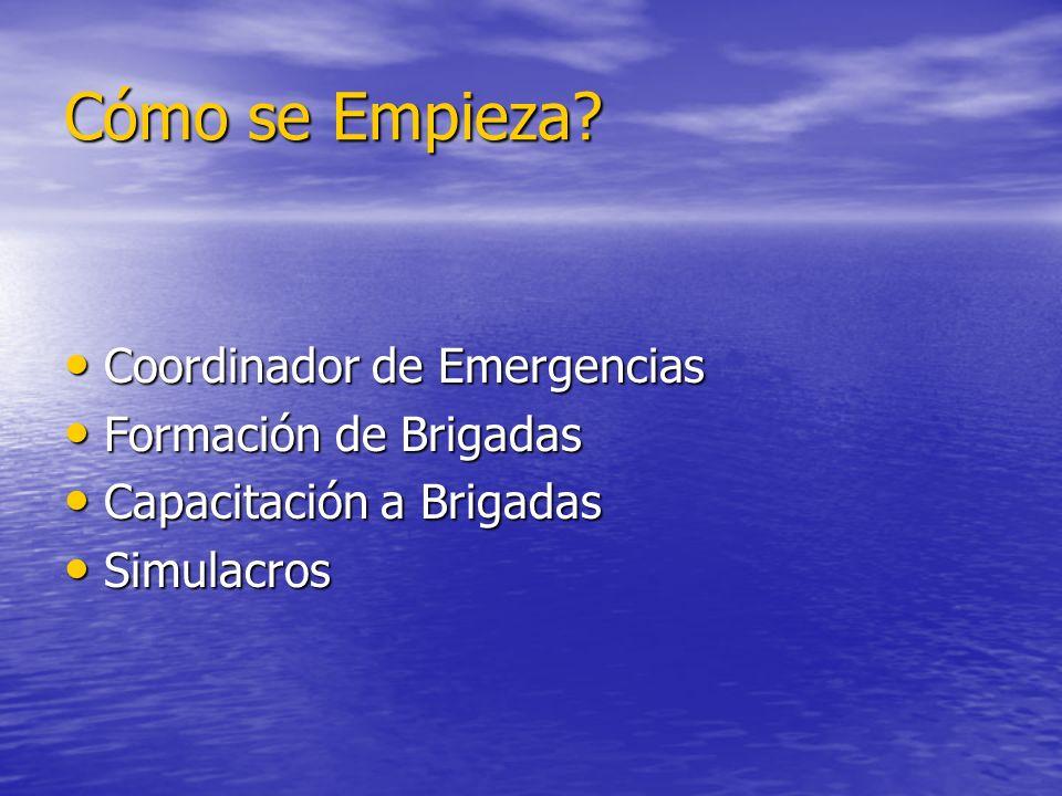 Cómo se Empieza Coordinador de Emergencias Formación de Brigadas