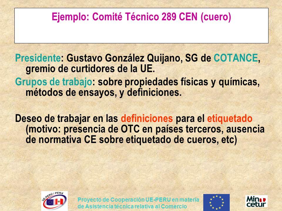 Ejemplo: Comité Técnico 289 CEN (cuero)
