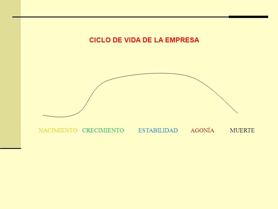 CICLO DE VIDA DE LA EMPRESA