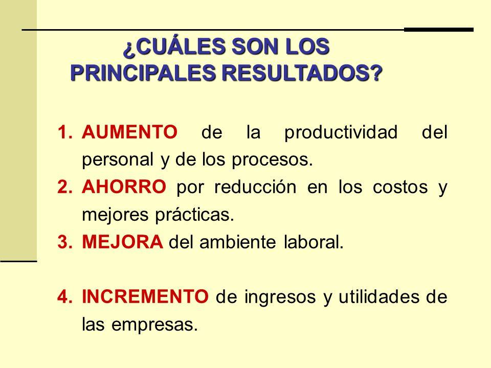 ¿CUÁLES SON LOS PRINCIPALES RESULTADOS