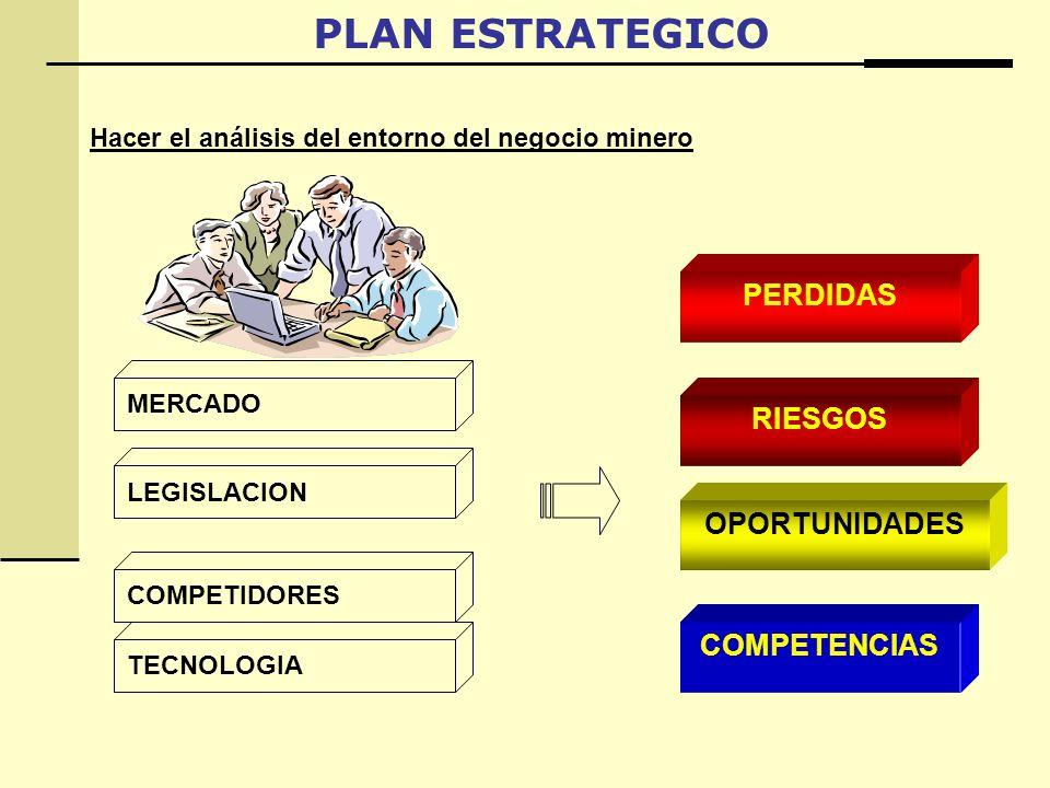 PLAN ESTRATEGICO PERDIDAS RIESGOS OPORTUNIDADES COMPETENCIAS