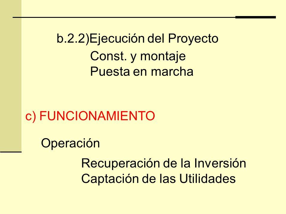 b.2.2)Ejecución del Proyecto