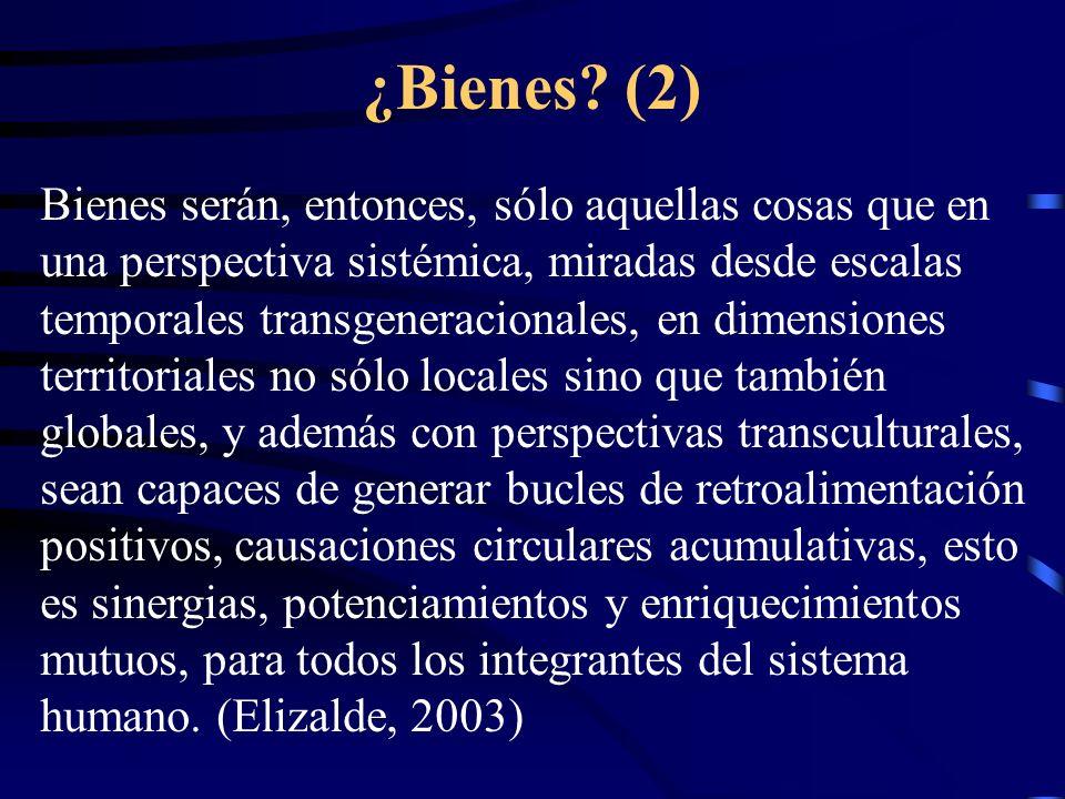 ¿Bienes (2)