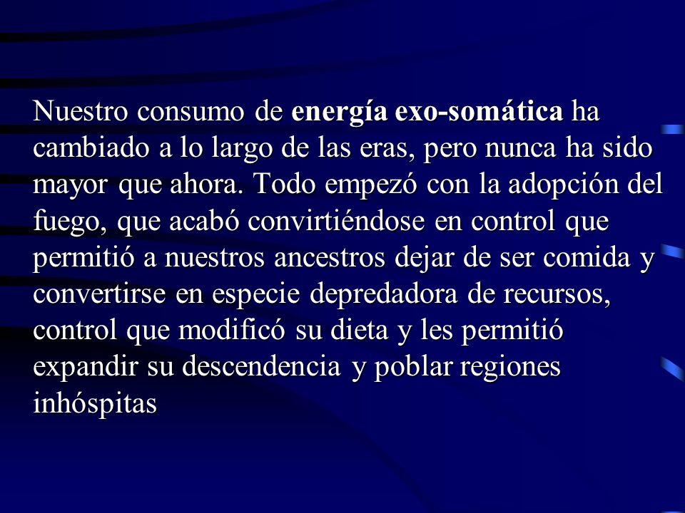 Nuestro consumo de energía exo-somática ha cambiado a lo largo de las eras, pero nunca ha sido mayor que ahora.