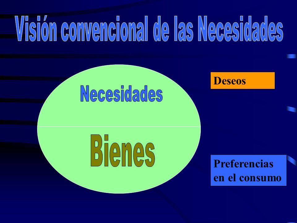 Visión convencional de las Necesidades