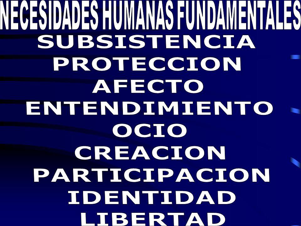 NECESIDADES HUMANAS FUNDAMENTALES