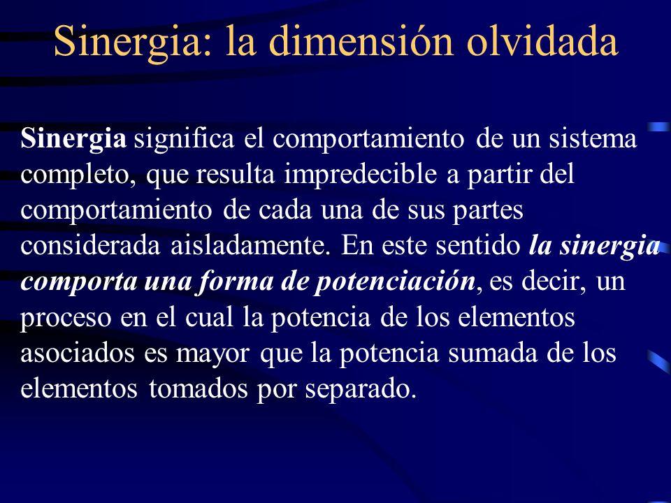 Sinergia: la dimensión olvidada