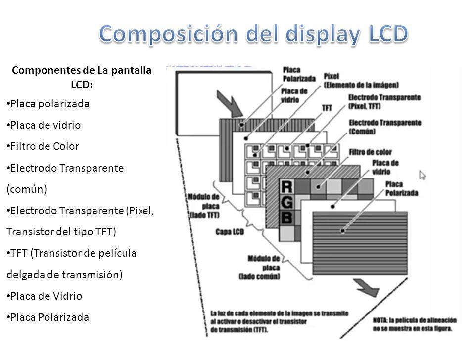Composición del display LCD Componentes de La pantalla LCD: