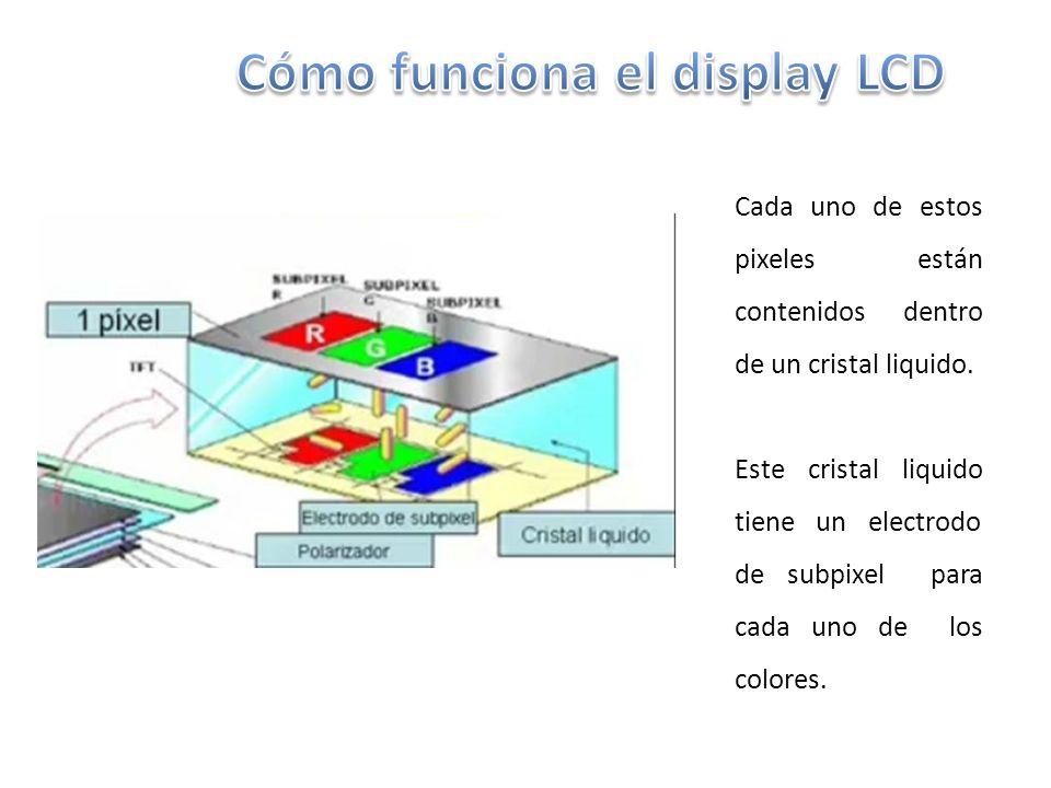 Cómo funciona el display LCD