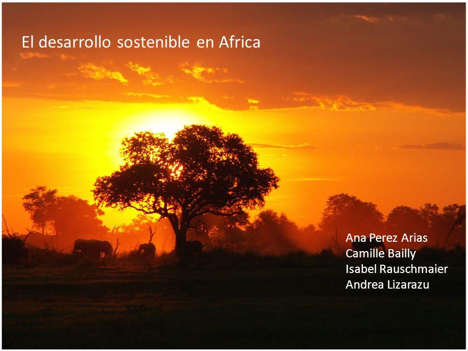 El desarrollo sostenible en Africa