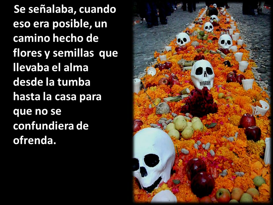 Se señalaba, cuando eso era posible, un camino hecho de flores y semillas que llevaba el alma desde la tumba hasta la casa para que no se confundiera de ofrenda.