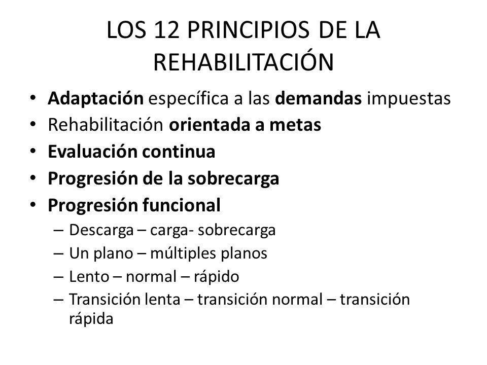 LOS 12 PRINCIPIOS DE LA REHABILITACIÓN