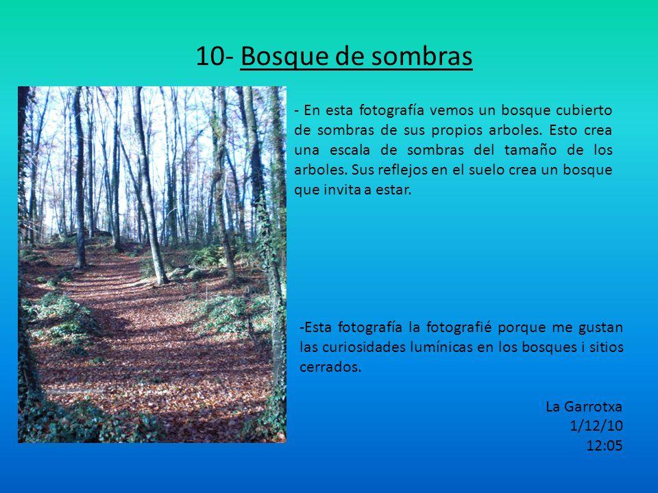 10- Bosque de sombras