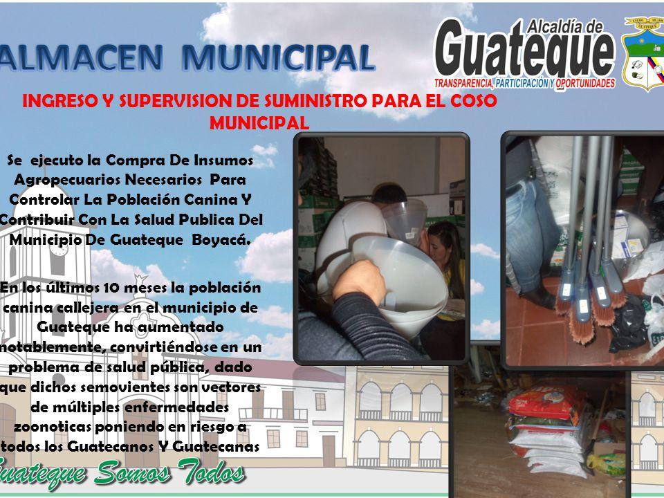 INGRESO Y SUPERVISION DE SUMINISTRO PARA EL COSO MUNICIPAL