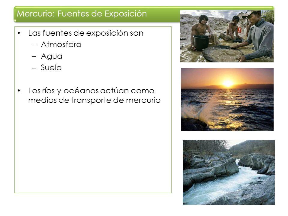 Mercurio: Fuentes de Exposición