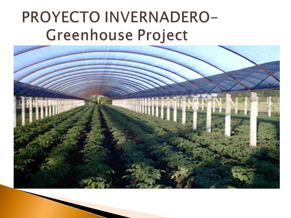PROYECTO INVERNADERO- Greenhouse Project