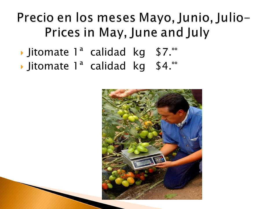 Precio en los meses Mayo, Junio, Julio- Prices in May, June and July