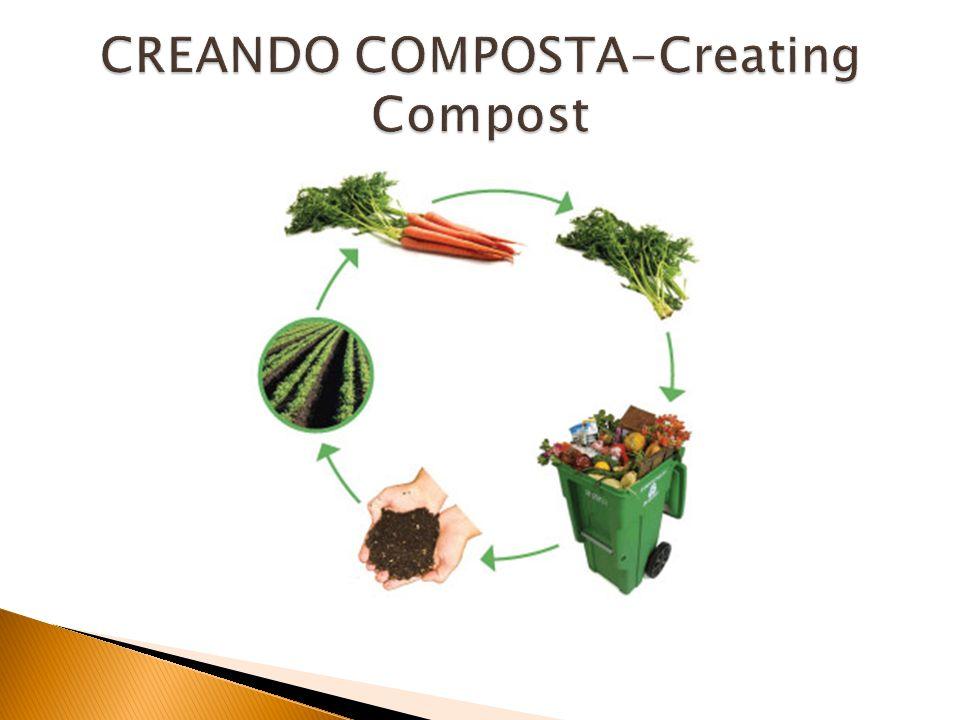 CREANDO COMPOSTA-Creating Compost