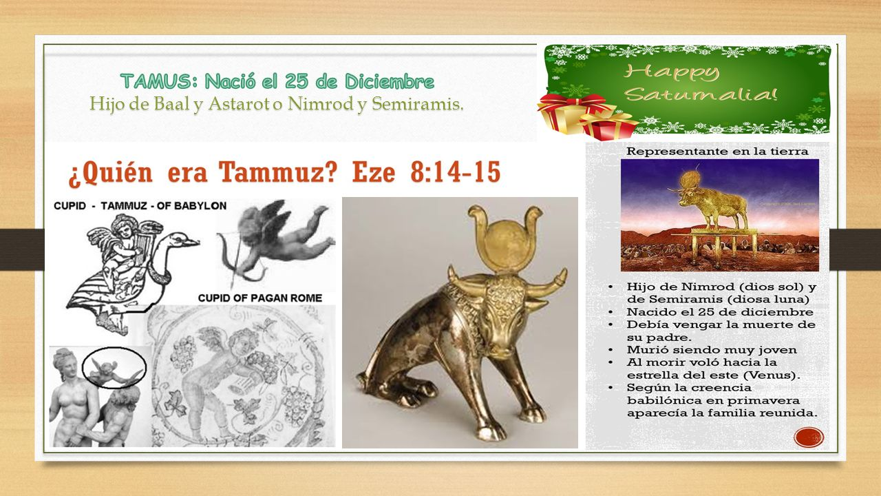 TAMUS: Nació el 25 de Diciembre