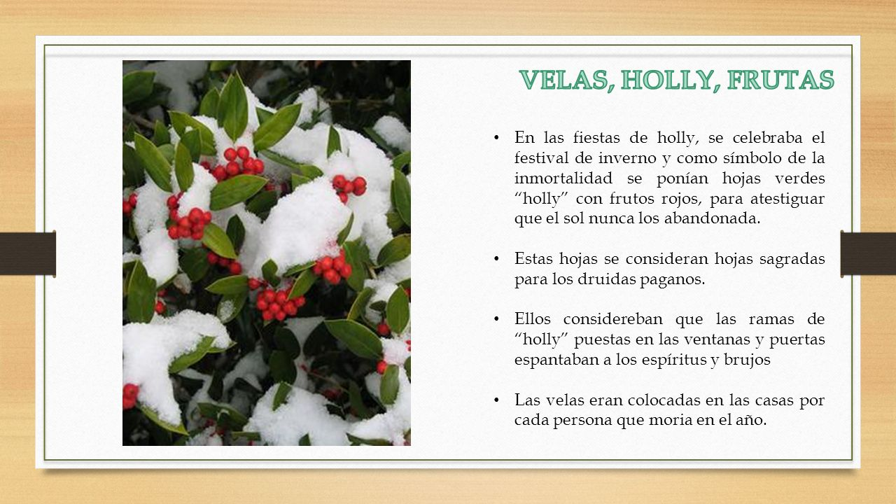 VELAS, HOLLY, FRUTAS