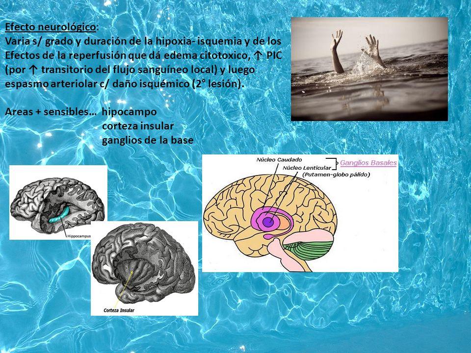 Efecto neurológico: Varia s/ grado y duración de la hipoxia- isquemia y de los. Efectos de la reperfusión que dá edema citotoxico, ↑ PIC.