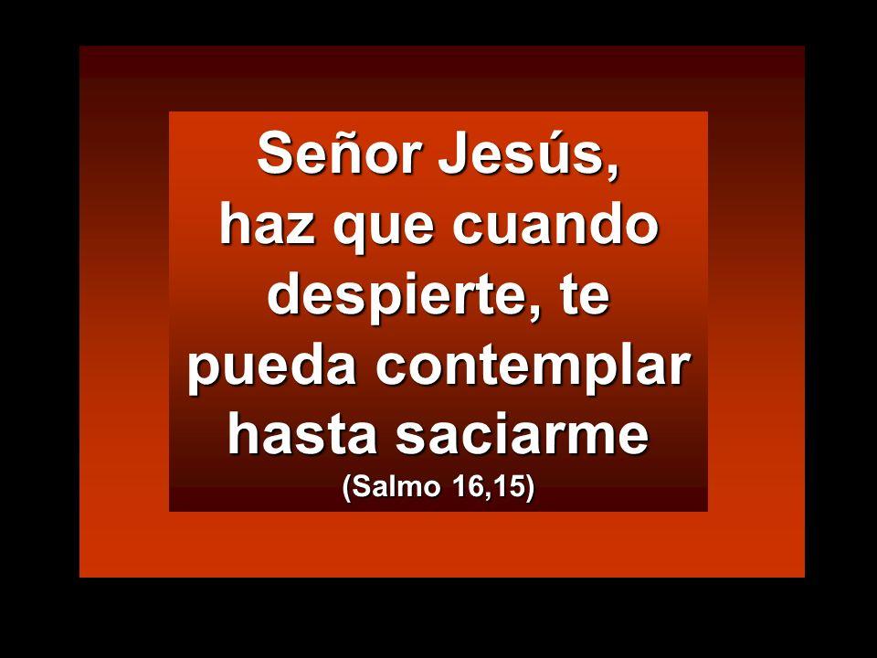 Señor Jesús, haz que cuando despierte, te pueda contemplar hasta saciarme (Salmo 16,15)