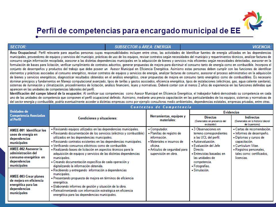 Perfil de competencias para encargado municipal de EE