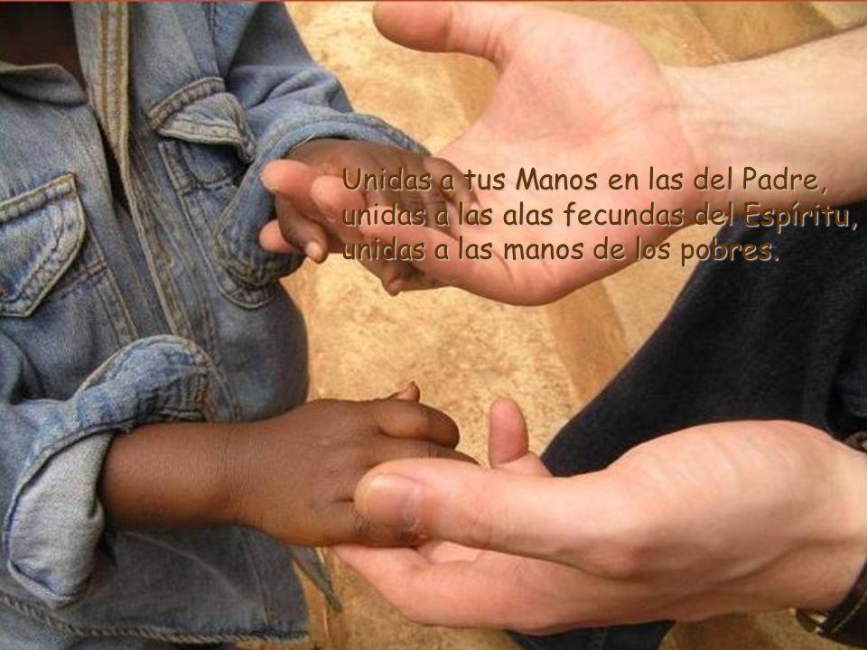 Unidas a tus Manos en las del Padre, unidas a las alas fecundas del Espíritu, unidas a las manos de los pobres.