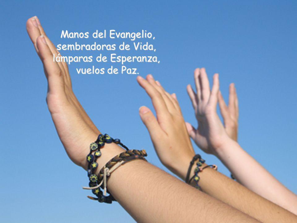 Manos del Evangelio, sembradoras de Vida, lámparas de Esperanza, vuelos de Paz.