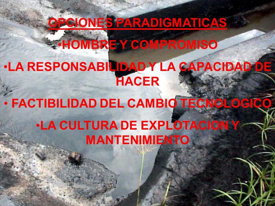 OPCIONES PARADIGMATICAS HOMBRE Y COMPROMISO