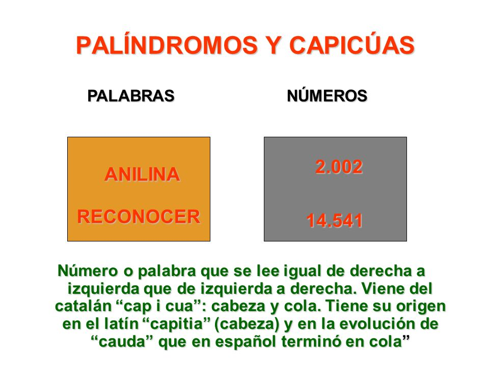 PALÍNDROMOS Y CAPICÚAS