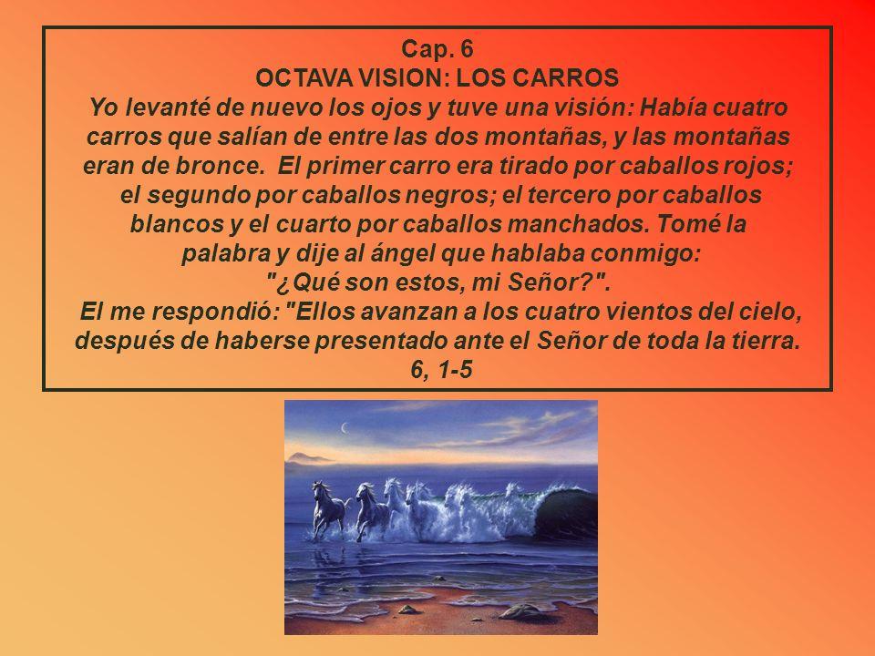 OCTAVA VISION: LOS CARROS