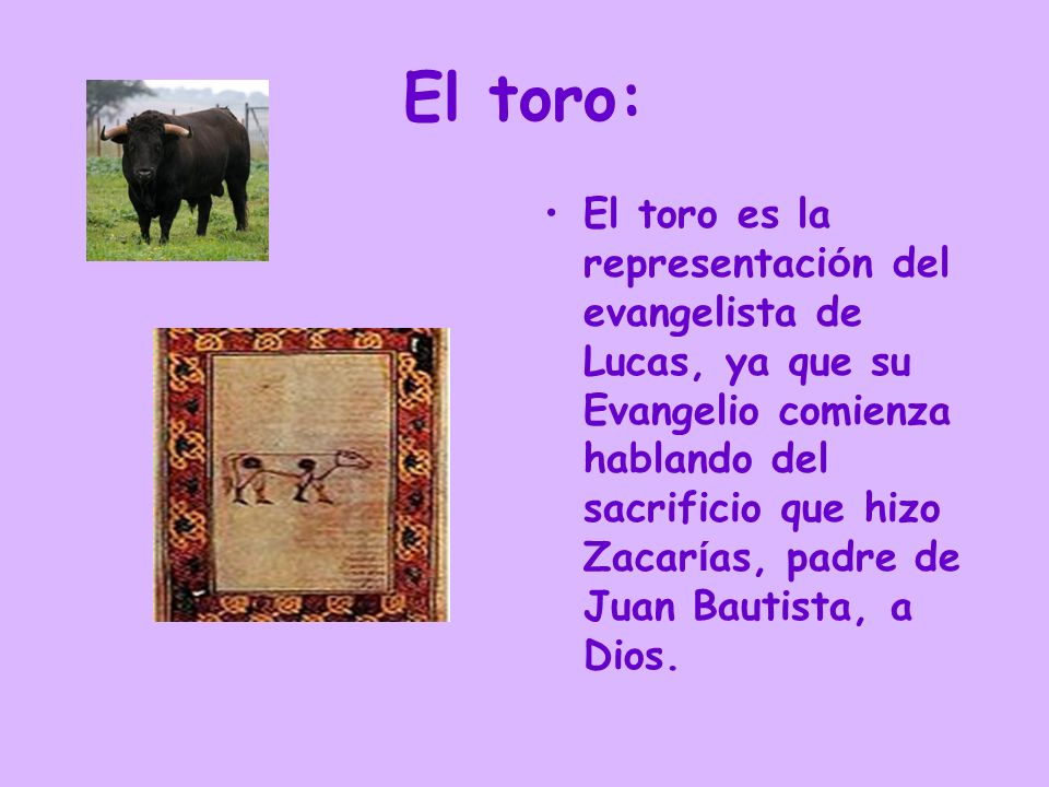 El toro: