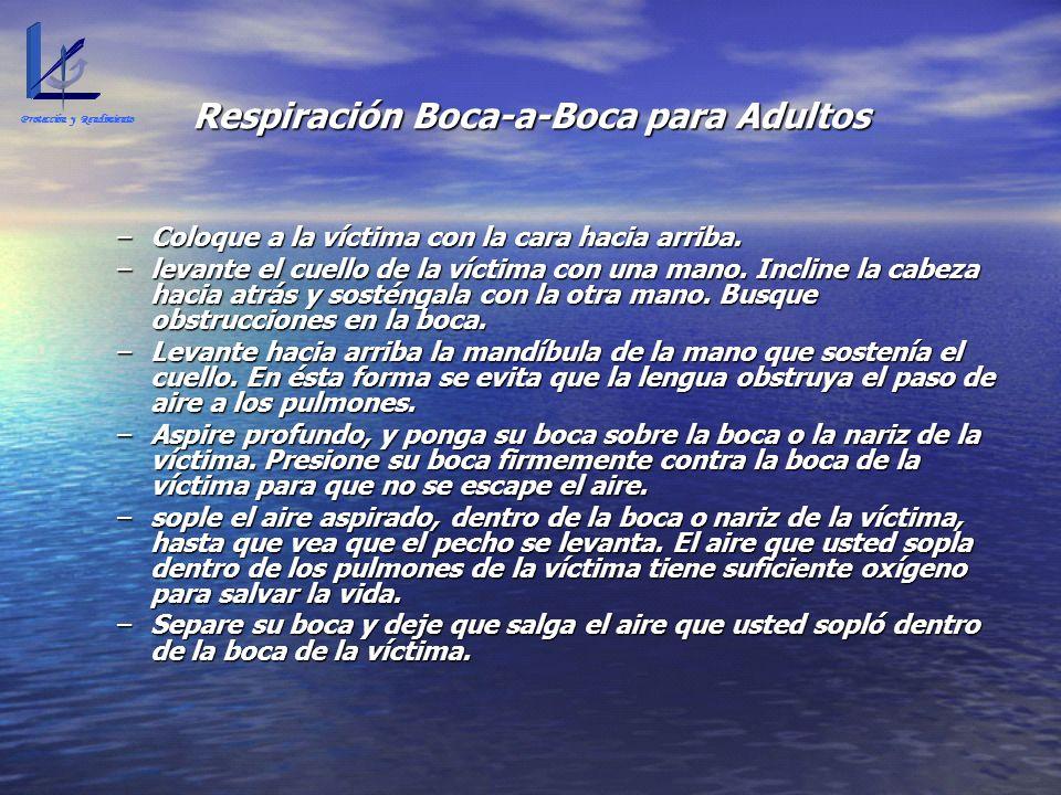 Respiración Boca-a-Boca para Adultos
