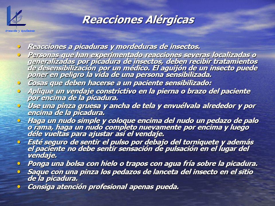 Reacciones Alérgicas Reacciones a picaduras y mordeduras de insectos.